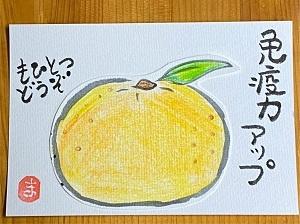 S__18268162.jpg